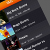 Thumbnail image for VLC Media Player App For iPad Now Supports iPhone &#038; iPod Touch